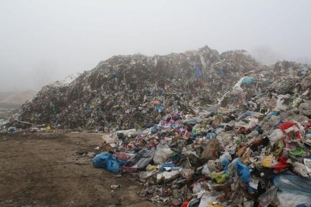 WIOŚ określił, że taki skład odpadów może zagrażać środowisku, a dokładna ocena będzie możliwa po przebadaniu pobranych próbek odpadów