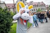 Po tych kierunkach zarobisz grosze! Oto najgorsze kierunki studiów w Poznaniu. Mamy najnowszy ranking!
