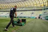 Czego spodziewać się po restarcie PKO Ekstraklasy? Czy polska liga będzie miała wiele wspólnego z Bundesligą? [analiza]