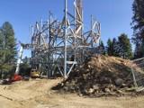 Trwa budowa ścieżki w koronach drzew w Świeradowie- Zdroju. Takiej w Polsce nie ma!