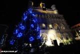 Wielka choinka na Starym Rynku już się świeci!
