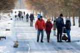 Jaka będzie zima 2021/2022? Eksperymentalna prognoza długoterminowa temperatury i opadu według IMGW