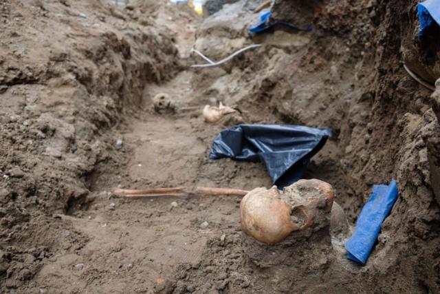 Ludzkie szkielety znajdowały się zaledwie pół metra pod zdemontowanym brukiem ulicy Katedralnej