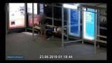 Kraków. Kobieta okradła mężczyznę, który zasnął na przystanku [FILM]