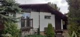 Takie domki rekreacyjne i działki ROD na sprzedaż w Szubinie i okolicy. Zobacz oferty [zdjęcia, maj 2021]