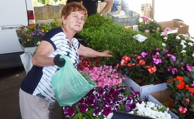 Sprawdzamy ceny kwiatów i ziół na zielonogórskim ryneczku przy ul. Owocowej. Dane z wtorku, 16 czerwca, 2020 roku.