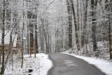Nagły atak zimy w Żarach! Nagle zrobiło się ciemno, a z nieba zaczął padać gęsty śnieg