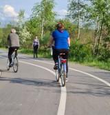 Nowy Sącz. Ścieżka na Kamienicą pełna rowerzystów [ZDJĘCIA]