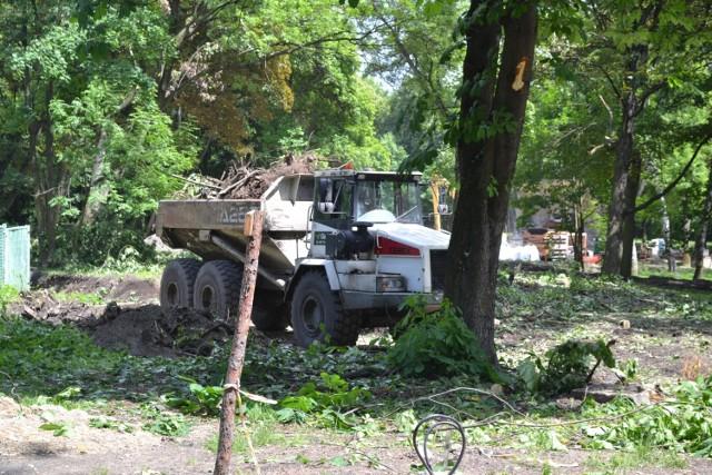 Trwa rewitalizacja Parku Zamkowego w Mysłowicach. W trakcie prac wycięto niektóre drzewa.   Zobacz kolejne zdjęcia. Przesuń zdjęcia w prawo - wciśnij strzałkę lub przycisk NASTĘPNE
