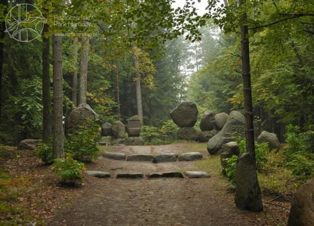 """Na niedużej przestrzeni ścieżki panuje duża różnorodność przyrodnicza, która wynika ze zmiany żyzności terenu. Szlak prowadzi ze Zwierzyńca do wsi Sochy, a w trakcie pieszej wędrówki podziwiać można """"Głaz Papieski"""", Pomnik Pamięci Poległych Leśników oraz punkt widokowy. Długość szlaku wynosi 2,6 km, a jego pokonanie trwa ok. 2 godzin."""