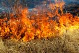 Powiat jasielski. W 2021 r. trawy nie płoną tak często jak w poprzednich latach