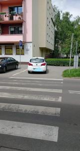 Oto mistrzowie parkowania we Włocławku. Zobacz zdjęcia