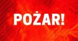 Pożar na Wyspie Sobieszewskiej. Jedna osoba trafiła do szpitala z objawami zatrucia tlenkiem węgla