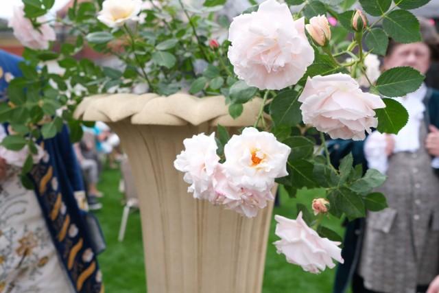 Królewska Wystawa Kwiatów w Warszawie