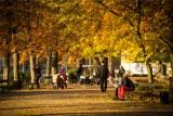 Pogoda w Łodzi i regionie na środę [WIDEO] Sprawdź pogodę dla Polski i województwa