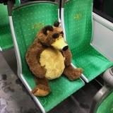 To dziwi i śmieszy pasażerów MPK Poznań! Zobacz zaskakujące zdjęcia z poznańskiej komunikacji