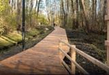 Skwer Dwa Brzegi. W Warszawie może powstać zielona oaza z drewnianym pomostem spacerowym