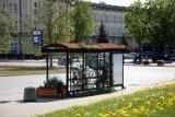 W Szczecinie powstaną ekologiczne wiaty przystankowe. Jest kilka propozycji