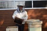 """Gmina Zbąszyń: O pasji i satysfakcji z pracy z pszczołami, rozmawiamy z  Adrianem Budą, właścicielem pasieki """"Pszczółkowo"""" z Nądni"""