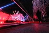 """Lublin: wielkopostny koncert """"Pasja 2021"""". Zobacz fotorelację sprzed gmachu Centrum Spotkania Kultur [ZDJĘCIA] [7.04]"""