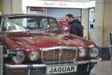 Wystawa lśniących Jaguarów w samym centrum Krakowa