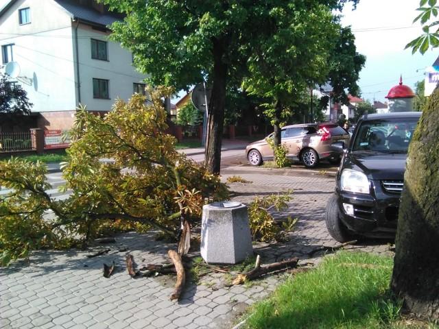 """To drzewo, które wiatr połamał niedaleko """"Biedronki"""" przy ul. Szkolnej w Bielsku"""