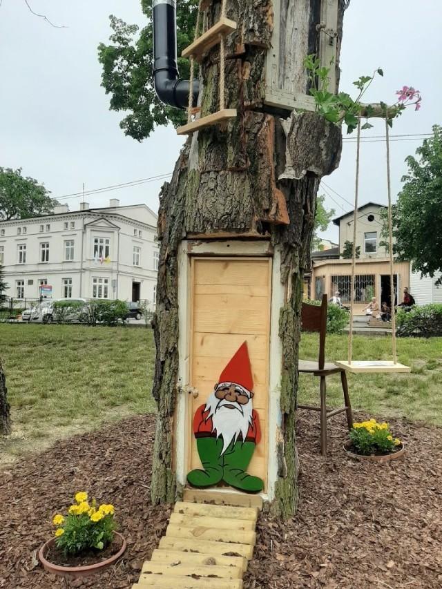 Skrzaty osiedliły się w Parku im. Jana Pawła II