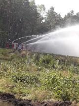 Strażacy z powiatu brodnickiego wiedzą jak się gasi pożar lasu. Zobaczcie zdjęcia!