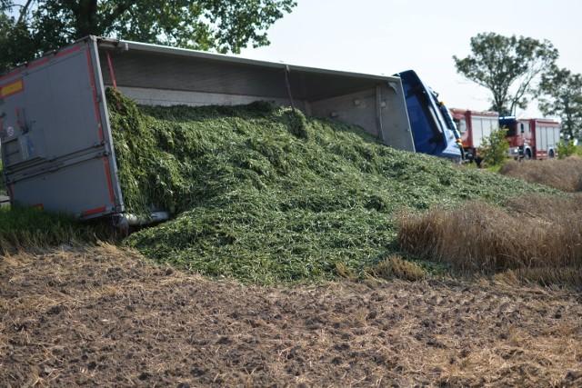 Ciężarówka z zieloną fasolą wywróciła się po zderzenia z drugą ciężarówką w gminie Bądkowo.