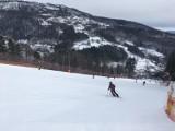 Warunki narciarskie w Beskidach: mimo dodatnich temperatur, na wielu trasach ciągle można jeździć (Zdjęcia ze stoków)