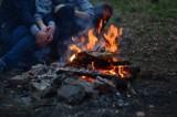 Kampinoski Park Narodowy. Organizowanie pikników z ogniskiem i grillem ponownie możliwe