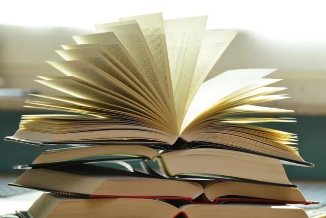 """""""Nike"""" to nagroda, której celem jest nie tylko wyłonienie najlepszego pisarza w roku ubiegłym, ale również promocja polskiej literatury – zwłaszcza powieści. W konkursie szansę mają autorzy piszący ze wszystkich gatunkach literackich. Tegorocznym laureatem jest Radek Rak – pisarz, po którego powieści z pewnością warto sięgnąć!"""
