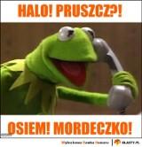 Najlepsze memy o Pruszczu Gdańskim. Zobaczcie, z czego śmieje się Internet!