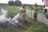 Strażacy po raz kolejny walczyli z pożarem [ZDJĘCIA]