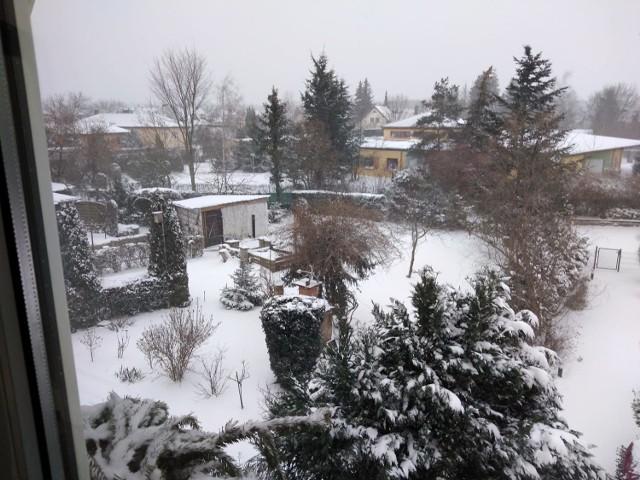 Zobaczcie najpiękniejsze zdjęcia Czytelników zaśnieżonego miasta. Nie wszędzie pada jednak śnieg, dostaliśmy zdjęcie Czytelnika z Alp, gdzie jest plus 10 stopni Celsjusza, a także pomarańczowy gaj Czytelniczki z włoskiego miasteczka Mondragone! Na zdjęciu z zaprzyjaźnionego Kożuchowa jest śnieg. Rozpoznacie, gdzie były robione zdjęcia?