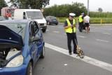 Wypadek w Ostaszewie. Samochód zderzył się z motocyklem. Kierowca jednośladu w szpitalu [ZDJĘCIA]