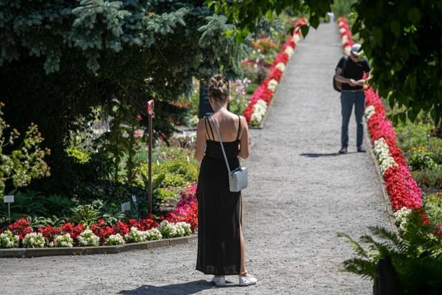 28.07.2020 krakow ogrod botaniczny       fot. anna kaczmarz / dziennik polski / polska press
