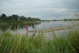 Wisła - zdziczała rzeka