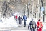 Kraków. Na spacer i sanki w święto zakochanych. Wyjrzało słońce i mieszkańcy wybrali się do parków [ZDJĘCIA]