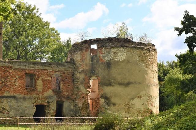 Pozostałości zamku Fredrów we Fredropolu. W ich otoczeniu ma powstać Twierdza Wykluczonych, ośrodek dla rehabilitowanych zwierząt.