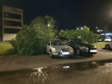 Potężna burza w woj. śląskim. Wiatr uszkodził dachy i powalił drzewa. Ewakuowano obóz harcerski