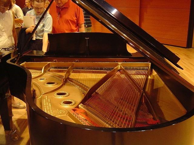 Źródło: http://commons.wikimedia.org/wiki/File:Piano_soundboard.jpg