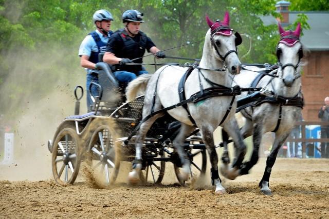 17. Święto Konia w Mierzęcinie już w niedzielę 26 maja