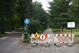 Krotoszyn: Ścieżka w parku zmieni wygląd
