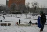 Całe rodziny korzystają ze śnieżnego szaleństwa na  miejskich pagórkach w Koninie