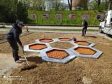 Coś nowego, coś fajnego w naszym mieście! W parku Chrobrego montują ziemne trampoliny