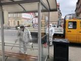 Legnica: Dezynfekcja przystanków, ławek, wind [ZDJĘCIA]