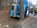 Wjechał ciężarówką w drzewo - miał 1,5 promila alkoholu w organizmie
