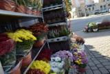 Dzień Wszystkich Świętych 2021 w Nowej Soli. Czy trzeba wydać majątek na chryzantemy i znicze? Sprawdź ceny i nowości wśród ozdób