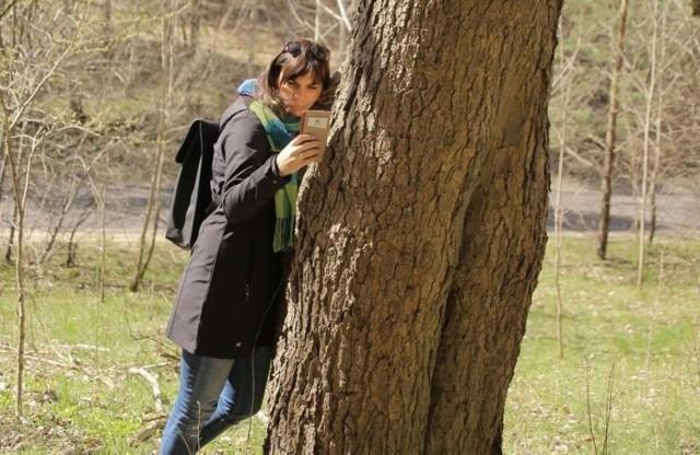 Trwa projekt Bydgoskie drzewa. Powstał z inicjatywy Stowarzyszenia Monitoring Obywatelski Drzew. Przyrodniczy zaczęli w tym sezonie inwentaryzację od spaceru po Fordonie.